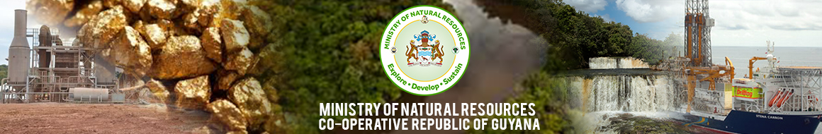 Ministry of Natural Resources Logo
