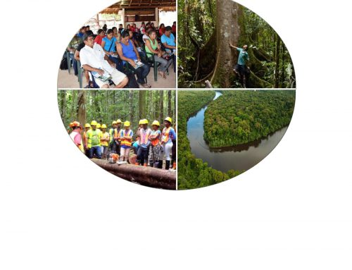 Guyana's National Forest Policy Plan – 2018