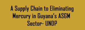 A Supply Chain to Eliminating Mercury in Guyanas ASGM Sector