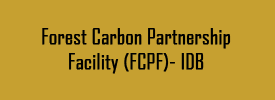 Forest Carbon Partnership Facility (FCPF)- IDB