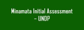 Minamata Initial Assessment