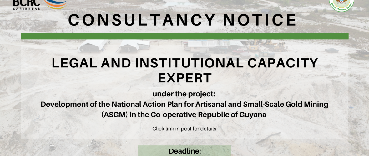 Terms of Reference – Development of the National Action Plan for ASGM in the Co-operative Republic of Guyana