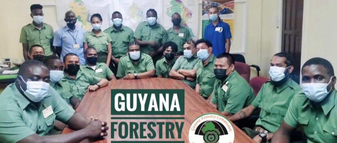National Forest Inventory on-going